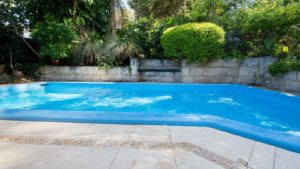 photo of a pool with green shrubs and landscape behind it