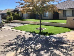 New grass installation.